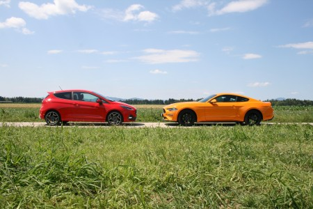 Nabrita Fiesta ST in ameriške mišice